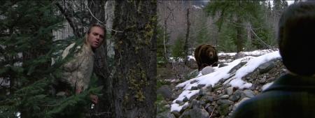 3-19-montage-bear.001.jpg.001