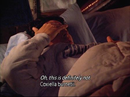 5-1-joel-coxiella03